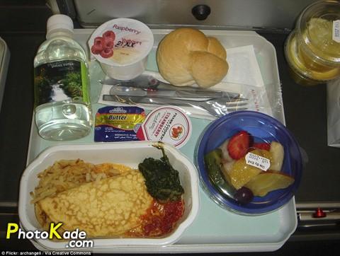 عکس غذای هواپیما های مختلف در جهان,عکس غذاهای سرور شده در ایرلاین های جهان,غذا های موجود در هواپیمایی ها ایران و جهان,تفاوت غذای هواپیماهای ایرانی و جهان,نوع غذای ایرلاین های ایرانی و تفاوت آن با جهان