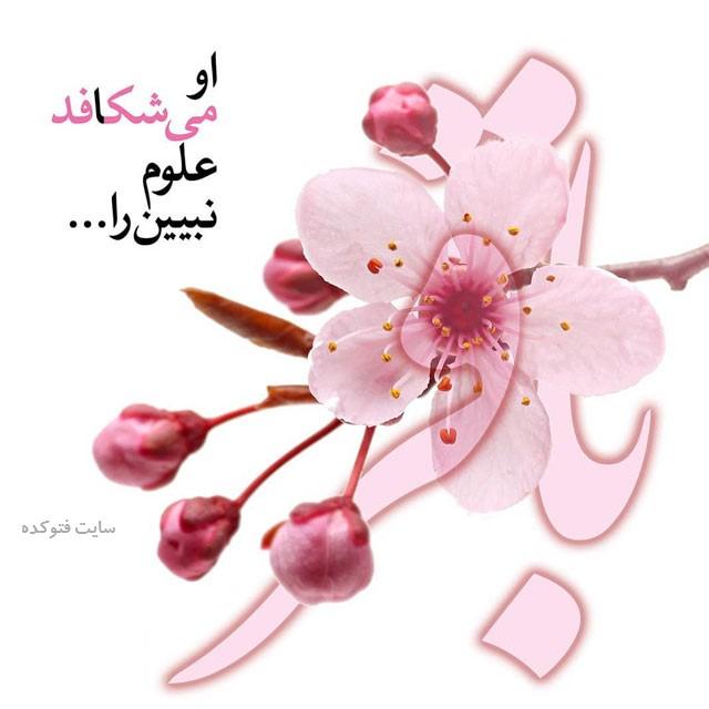ولادت امام محمد باقر با متن زیبا