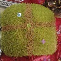 سبزه خاکشیر + طرز تهیه سبزه عید با خاکشیر