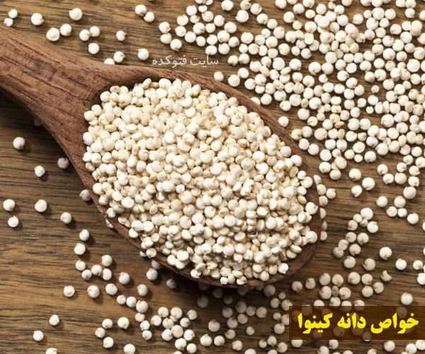 خواص دانه های کینوا چیست