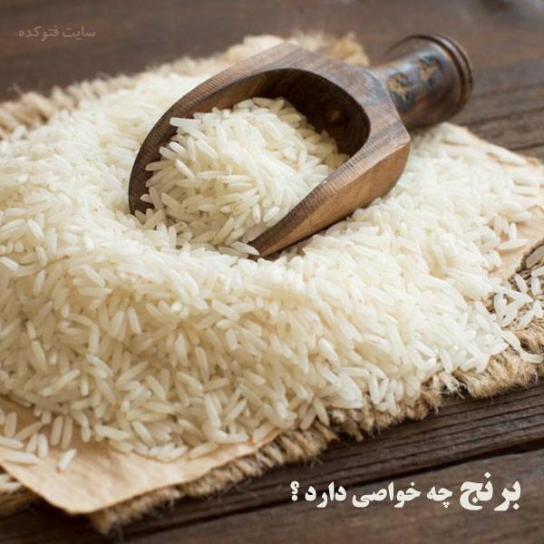 برنج چه خواصی دارد + خاصیت برنج ایرانی برای سلامتی بدن