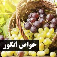 خواص انگور برای سلامتی + پوست، بارداری و کودکان