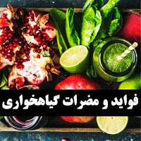 فواید گیاهخواری و مضرات + گیاهخواری در اسلام و لاغری
