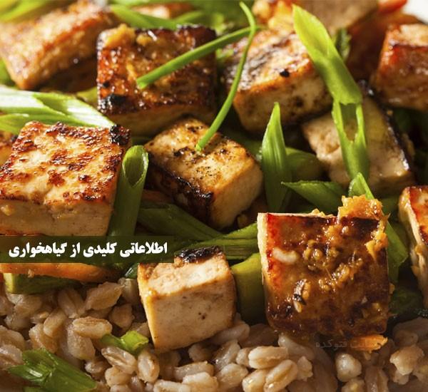 گیاهخواری برای لاغری و کاهش وزن