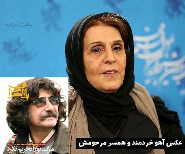 آهو خردمند و همسرش محمود استاد محمد + بیوگرافی