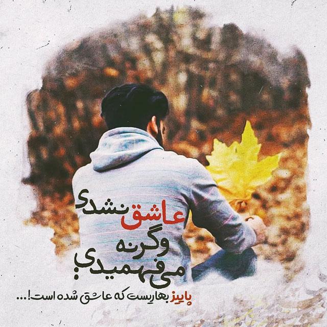 ax paeizi photokade 10 - 100 عکس پروفایل پاییزی خفن دو نفره + متنو عکس عاشقانه پاییز