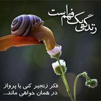 عکس قرآنی زیبا با متن نوشته های نورانی