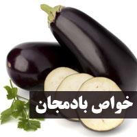 خواص بادمجان + 34 خاصیت بادمجان سیاه برای سلامتی