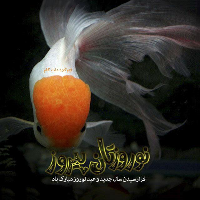 عکس نوشته نوروزتان پیروز