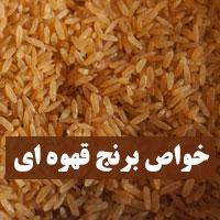خواص برنج قهوه ای برای لاغری، پوست و بدنسازی