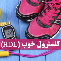کلسترول خوب HDL چیست + 21 روش افزایش کلسترول خوب