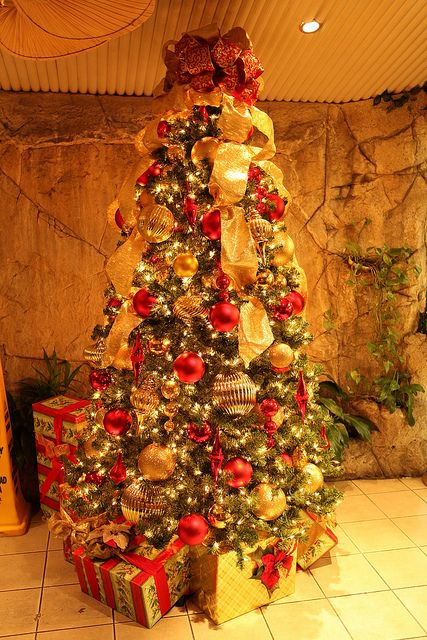 christmas-tree-photokade-2015 (14)