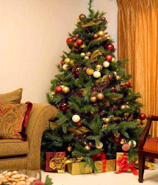 عکس درخت کریسمس با تزیین زیبا,عکس تزیین درخت کریسمس,درخت کریسمس,عکسهای درخت کریسمس,تزیینات درخت کریسمس,مدل درخت کریسمس,u;s nvoj ;vdsls,تصویر درخت کریسمس