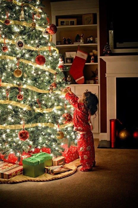 christmas-tree-photokade-2015 (22)