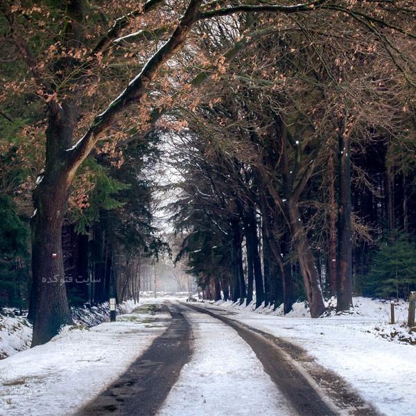 انشا در مورد فصل زمستان