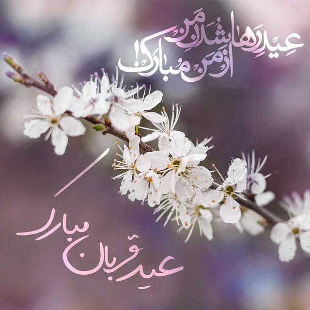 متن ادبی عید قربان 98