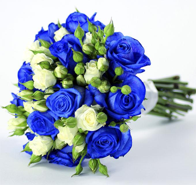 عکس دسته گل طبیعی آبی و زرد برای پس زمینه گوشی