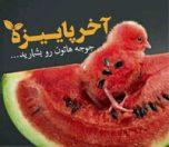 shabeyaldaaa-photokade