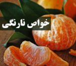 narangi-khavas-photokade (1)