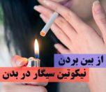 nikotin-sigar-photokade-com (1)