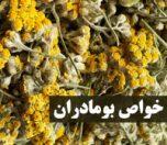 bomadaran-photokade-com (1)