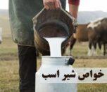 خواص شیر اسب برای انسان