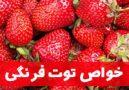 خاصیت توت فرنگی برای سلامتی