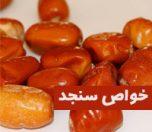 خواص سنجد برای سلامتی