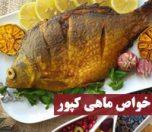 خواص ماهی کپور