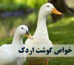 خواص گوشت اردک