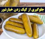 khiarshor-photokade-com (1)
