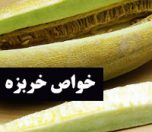 khavase-kharbozeh-photokade (1)