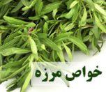 khavasmarzeh-photokade (2)