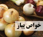 onion-photokade-com (1)