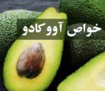 khavas-avocado-photokade (1)