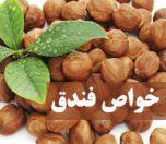Hazelnutproperties-photokade (1)
