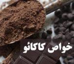kakaoo-photokade-com (1)