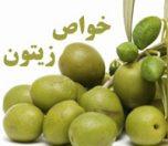 Olive-photokade-com (1)