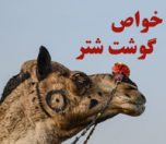 camel-meat-photokade (1)