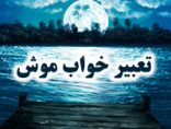 tabirekhab-mosh-photokade