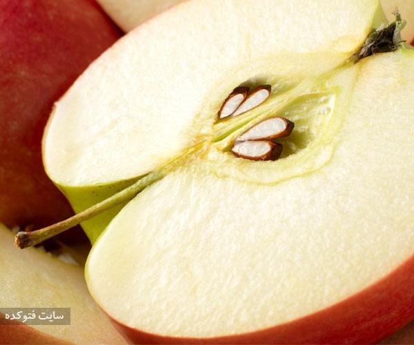 دانه ها سیب از از میوه های خطرناک برای سلامتی بدن انسان