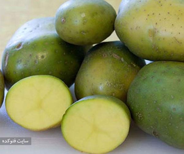 مضرات سیب زمینی سبز
