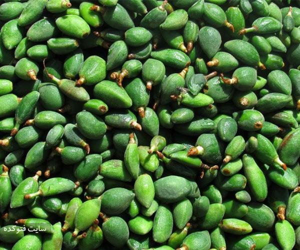 چاغاله بادام از میوه های خطرناک