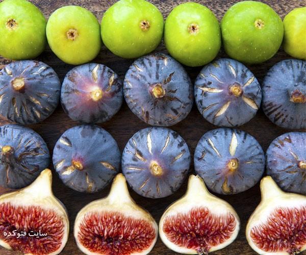 انجیر از میوه های مضر برای انسان