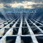 شایعه قبرهای 30 میلیون تومانی در تهران