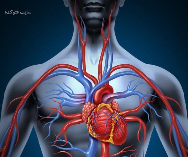 راهکار افزایش گردش خون