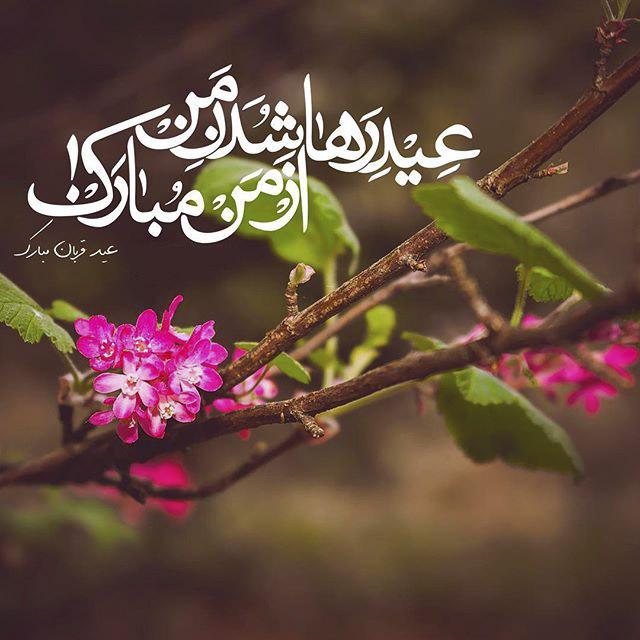 عکس عید سعید قربان مبارک با متن