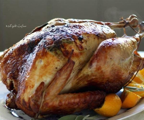 مضرات گوشت اردک چیست