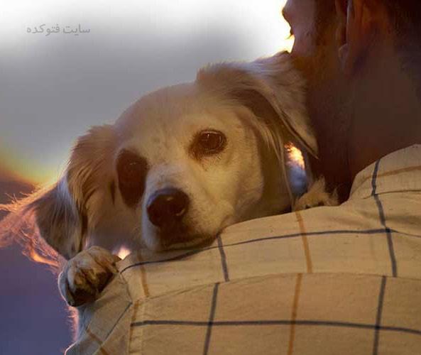 مزایای نگهداری حیوانات خانگی