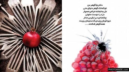 hijab-jaleb-photokade (13)